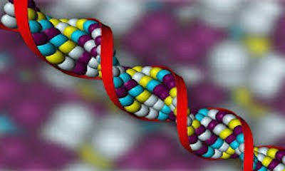 GenomicsModelation.jpg